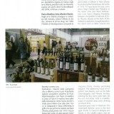 I 50 anni del vino - Anna Di Martino pg17