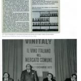 I 50 anni del vino - Anna Di Martino pg3