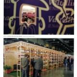 I 50 anni del vino - Anna Di Martino pg34